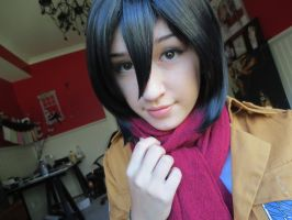 Mikasa Ackerman~ Makeup Test by StillDollArtist