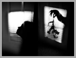 Penumbra: Shadows, Silhouettes, and Surrealism by graviloquence