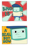 BMO by LargeStupidity