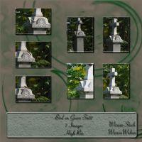 bird on grave set2 by Wicasa-stock