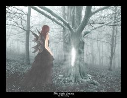 ..:: The light forest ::.. by MeowLady