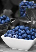 Blueberry by Labrinth63