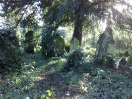 Southampton old cemetery 2 by thelaird1