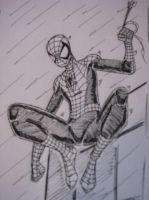 Spider-man in the rain by Amaro-House