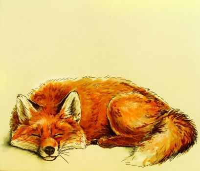 Fox by BooYeh