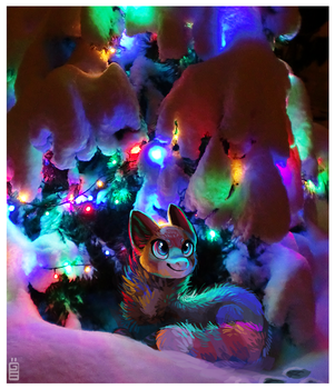 Christmas shelter by griffsnuff