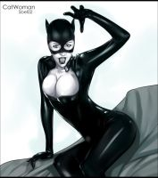 Catwoman by sbel02