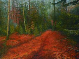 Red Carpet Of The  Forest At Evening by AldemButcher