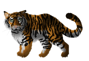 Tiger by LordTroll