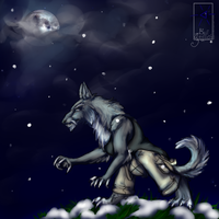 Stalking the moon by BGArts