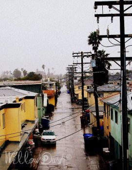 Stormy in San Diego by GypsyWillow22