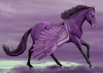 Purple Clouds by shilohs