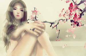 Cherry Blossoms by SL-Elfe