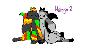 Haley X Contest Entry by ToxicSkullie027