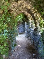 the ivy tunnel by SophieClare