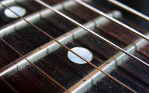 Les Paul Strings Macro by cheyrek