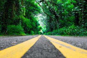 Serenity Road by HanssenPhotography