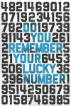 Do You Remember Your Lucky Number by billpyle