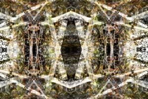 abstract 21 by darkwitch123