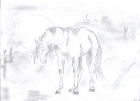 Lonely Desert Horse by xx--Girl--xx