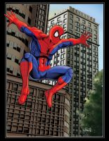 The Amazing Spiderman 08 by thelearningcurv