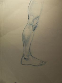 life drawing - leg study by COMBAT-BANANA