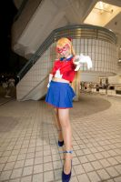 Code name is Sailor V by kyokohk38