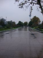 Rainy autumn photo by Laura-in-china