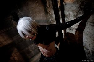 Togainu no Chi - Inu by AngelCostumes