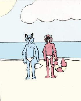 Terry and Taylor on a Beach in France by DPCBlueFox1991