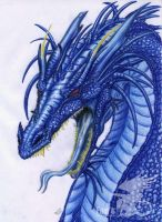 +Blue dragon+ by Fan-the-little-demon