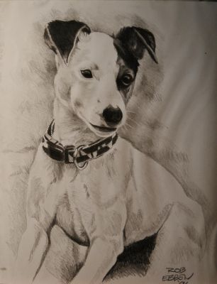 Jack Russell Terrier by MrEyeCandy66