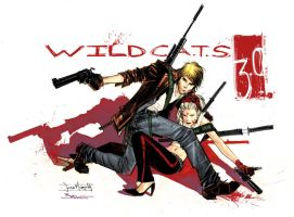 WildCats 3.0_by Sean Murphy by Bruce-Azevedo