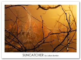 Suncatcher by Julian-Bunker