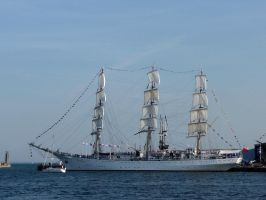 TSR - Dar Mlodziezy - sails by The-Black-Panther