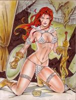 Red Sonja (#24) by Rodel Martin by VMIFerrari
