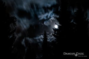Moon in the Woods by DamianDarkArts