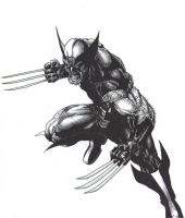 Wolverine yet again.... by -vassago-
