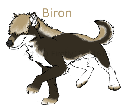 Biron Character Reff by firefly16161616