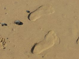 Sand Footprints by BlackFireDesign