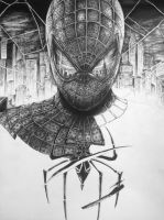 Amazing Spiderman - Progress Update! by inhibitus