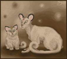 Meowth and Persian (semi-realistic) by Maylara