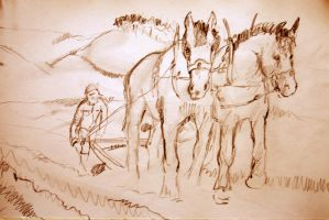 We plough the fields and scatter....2 by mr-macd