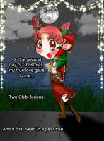 12 Days of a Sailor Moon Christmas Day 2 by MSTieMiss