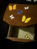 Butterfly Jewelry Box Drawer by KimsButterflyGarden