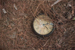 Hours, and how they consume by Anina-Bird