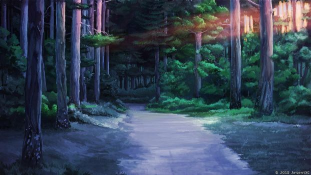 Evening road in the woods by arsenixc