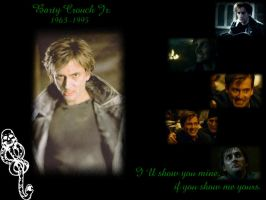 Barty Crouch Jr. Wallpaper by pfeifhuhn