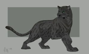 Weekly Critters 1: Jaguar by Clairictures