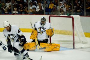 Fleury stops the puck by tribechick13